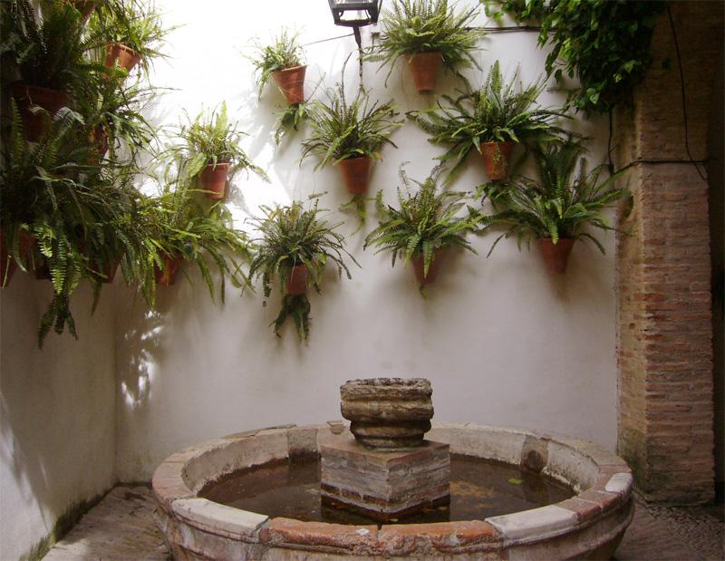 sp_plants