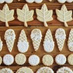 stylish icing cookies