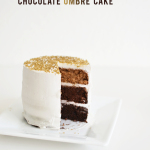 vegan chocolate ombre cake