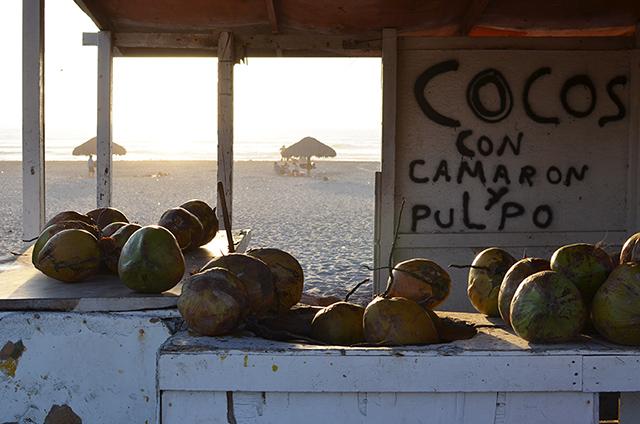 beach_coconuts