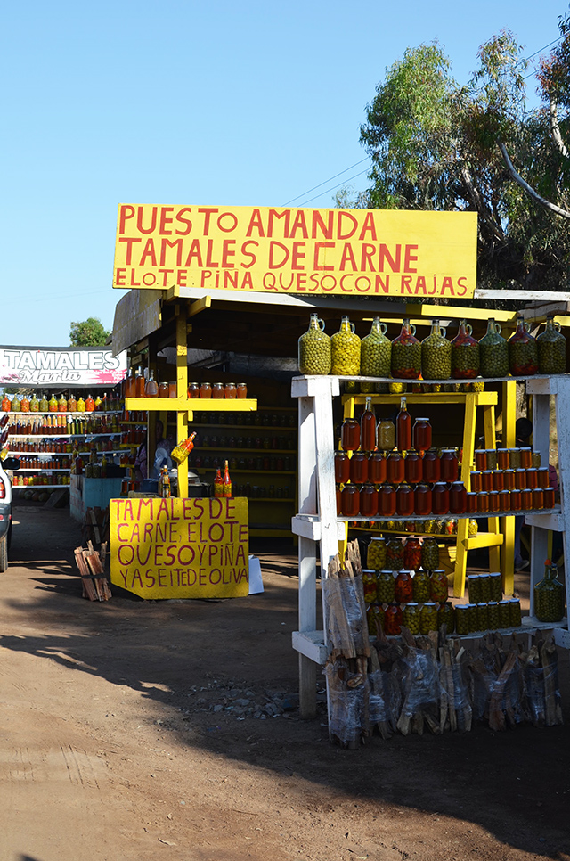 mexico_tamale