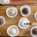 almond coconut ball