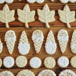 stylish icing cookies